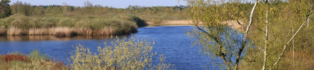 België Natuurgebied De Liereman Oud-Turnhout