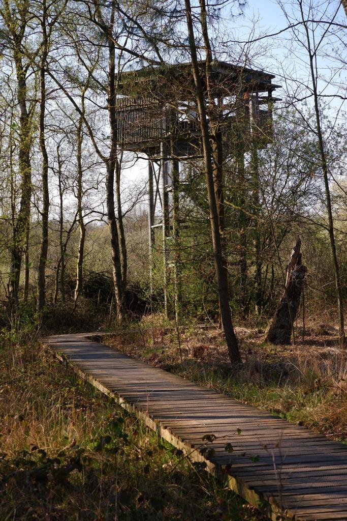 België Uitkijktoren Kempen Oud-Turnhout Liereman