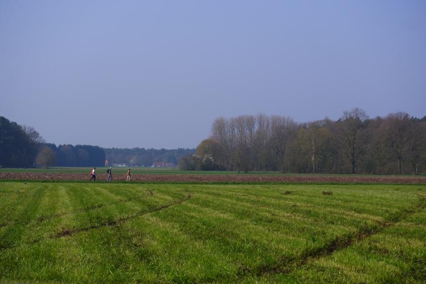Wandelen  wandeling velden bossen wandelroute wandelknooppunt België Nederland Benelux