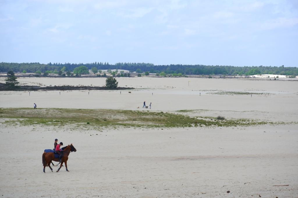 Wandelen Nederland nationaal park duinen Noord-Brabant paardrijden