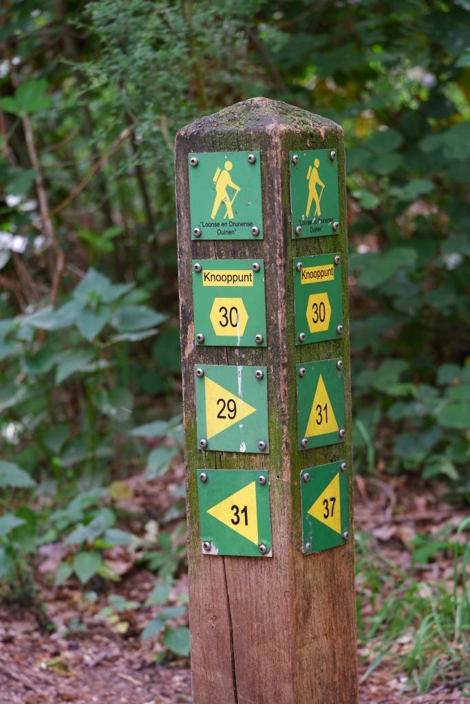 Wandelen wandelknooppunt wandelroute Nederland nationaal park duinen Noord-Brabant
