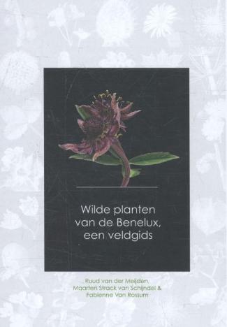 wilde planten benelux