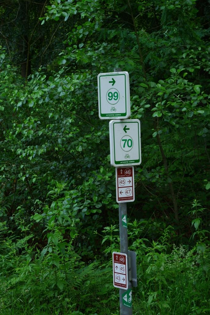 wandeling grotenhoutbos Vosselaar wandelknooppunt wandelroute fietsknooppunt
