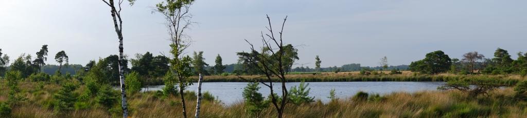 Vennengebied Turnhout wandelroute natuurreservaat natuurgebied