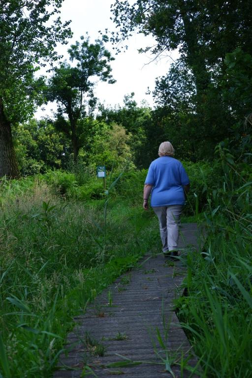wandelen wandelroute wandeling natuurwandeling