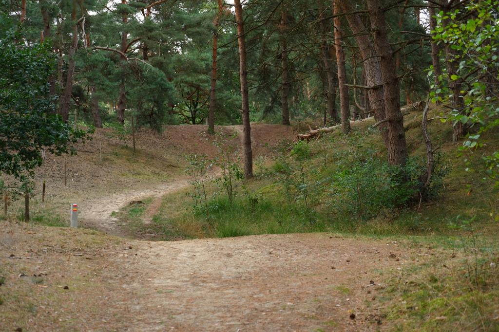 hoge rielen natuurdomein jeugdverblijf kamp kamperen wandelen wandelroute heuvelachtig