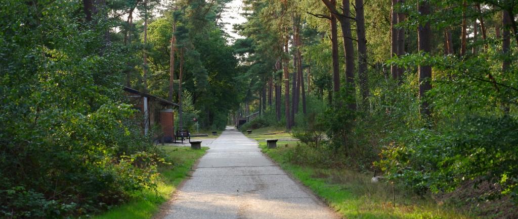 hoge rielen natuurdomein jeugdverblijf kamp kamperen wandelen wandelroute middenweg
