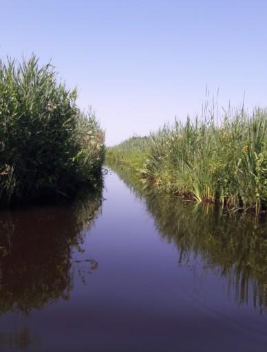 kano varen weerribben wieden nationaal park belt-schutsloot kanoën kano boot varen gracht