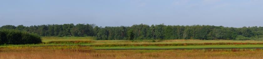 natuurgebied wandelroute wandeling wandelknooppunt