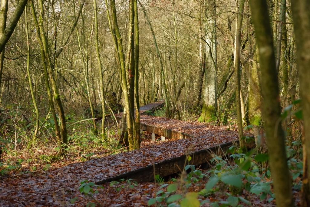 Balderij Tielen Kasterlee  hoge rielen natuurdomein jeugdverblijf kamp kamperen wandelen wandelroute heuvelachtig