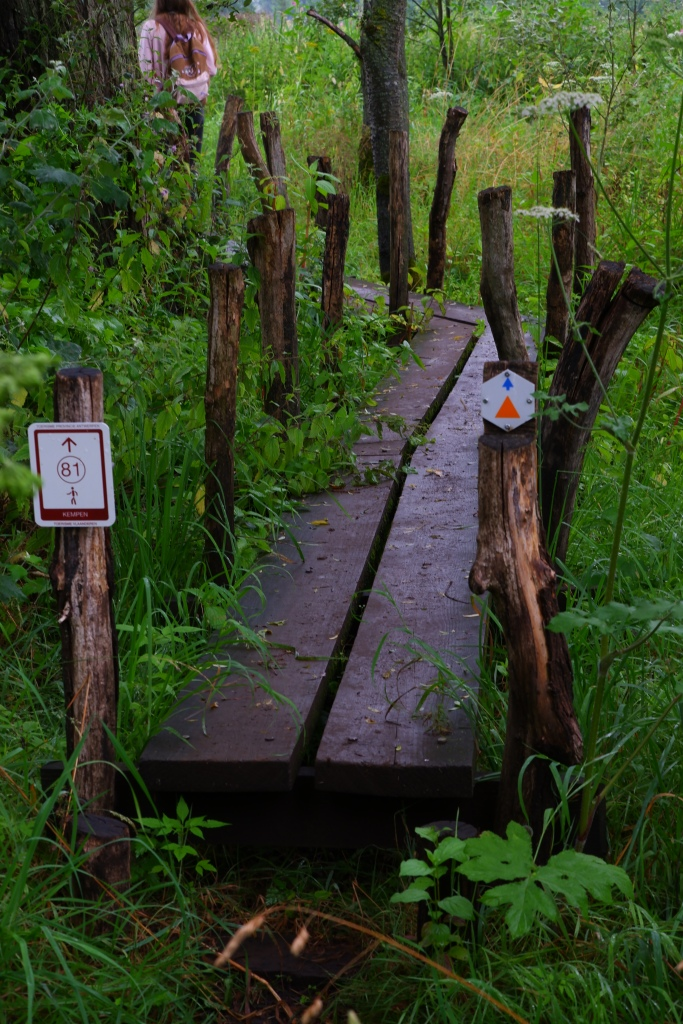 wandeling Natuurpad Lovenhoek Lovenbos Vorselaar wandelroute houten brug