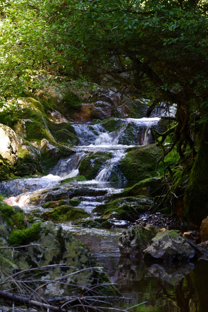 wandeling wandelroute natuurwandeling waterval
