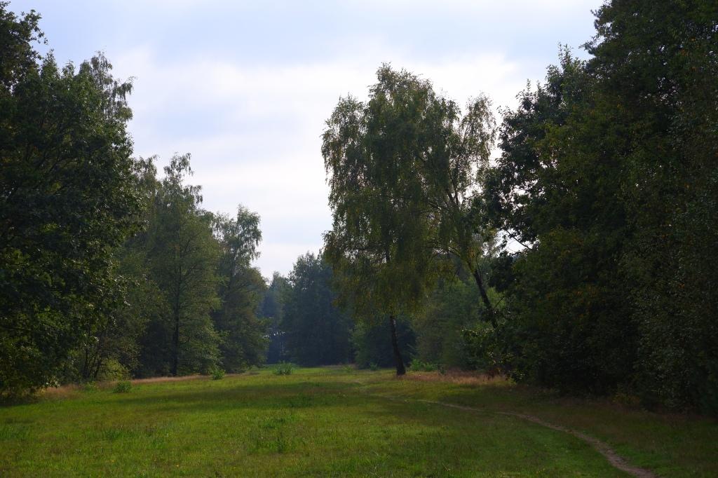 natuurgebied Chaamse Bossen wandelpad wandelroute natuurdomein Noord-Brabant boswandeling Nederland Benelux