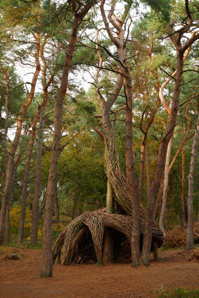 Lommelse Sahara Limburg vijvers natuurgebied wandelen wandelroute speelbos