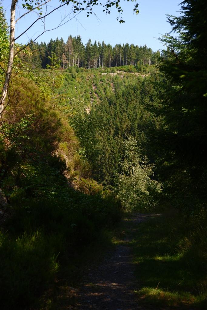 mooiste wandelingen studiobenelux wandelen natuurwandeling prachtige natuur ferme libert provincie luik belgië benelux
