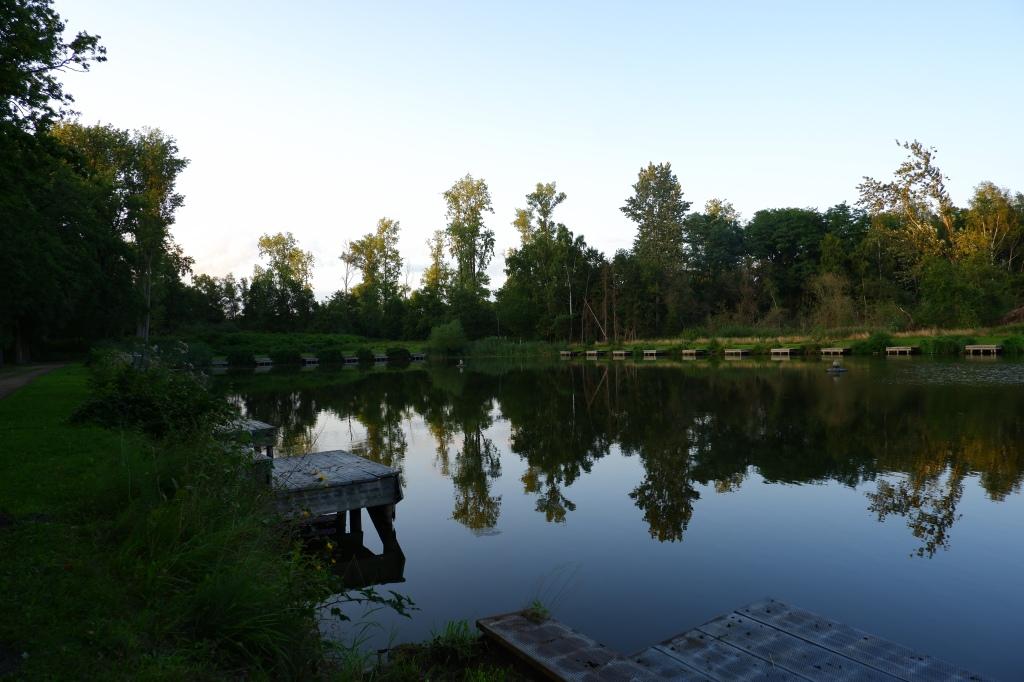 kolonie Merksplas wandelen natuurgebied natuurwandeling wandelroute visvijver
