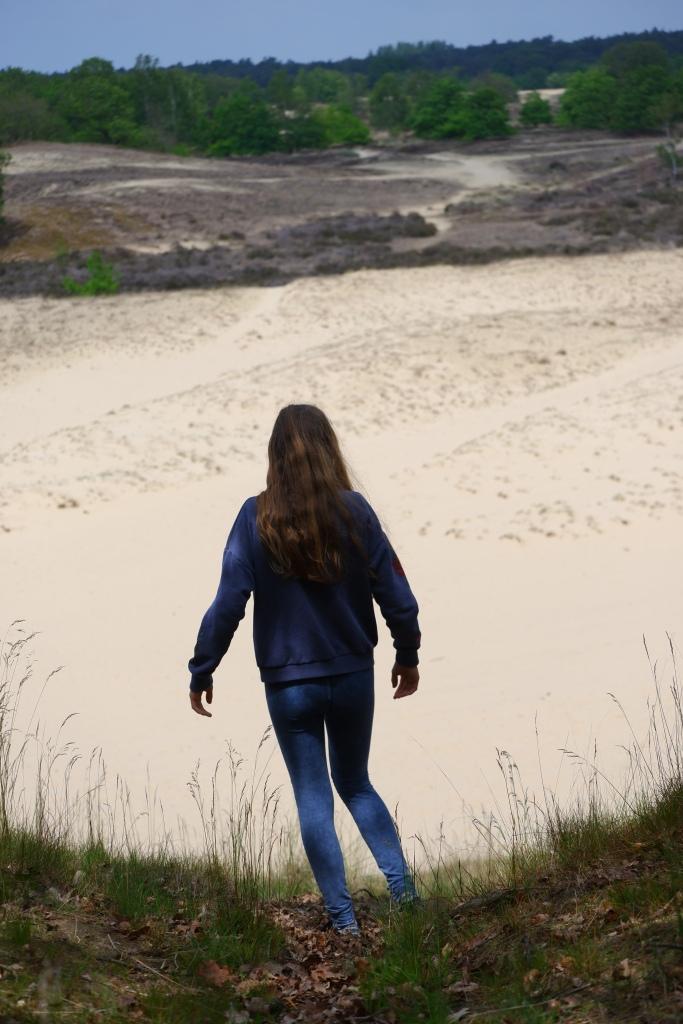mooiste wandelingen studiobenelux wandelen natuurwandeling prachtige natuur Loonse en Drunense duinen nationaal park Nederland Benelux