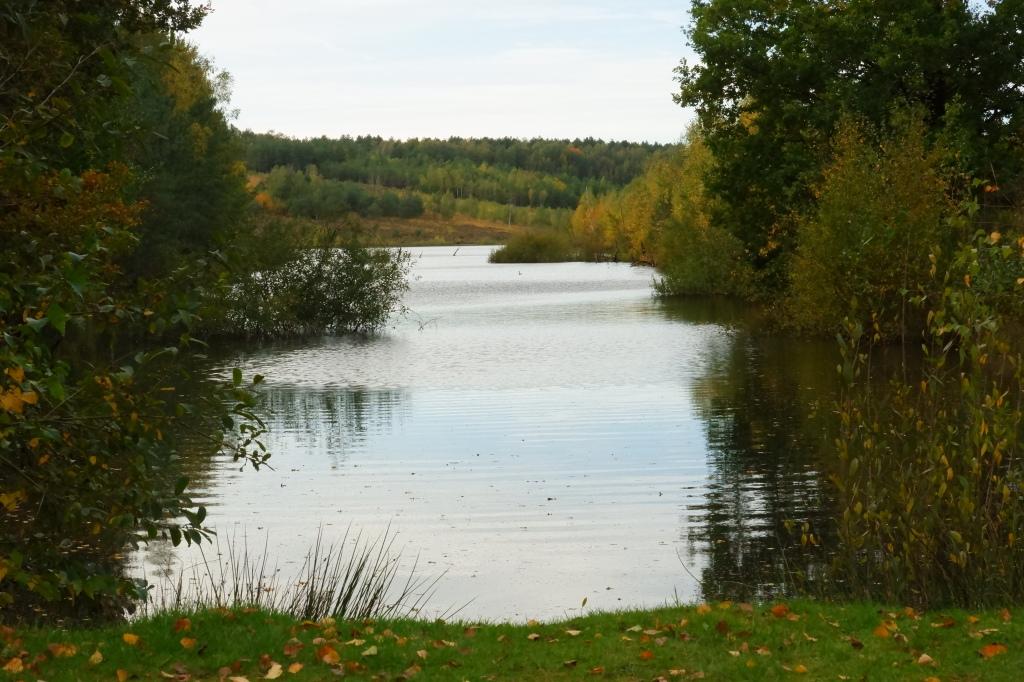 mooiste wandelingen studiobenelux wandelen natuurwandeling prachtige natuur Vallei van de Kikbeekbron Maasmechelen België provincie limburg