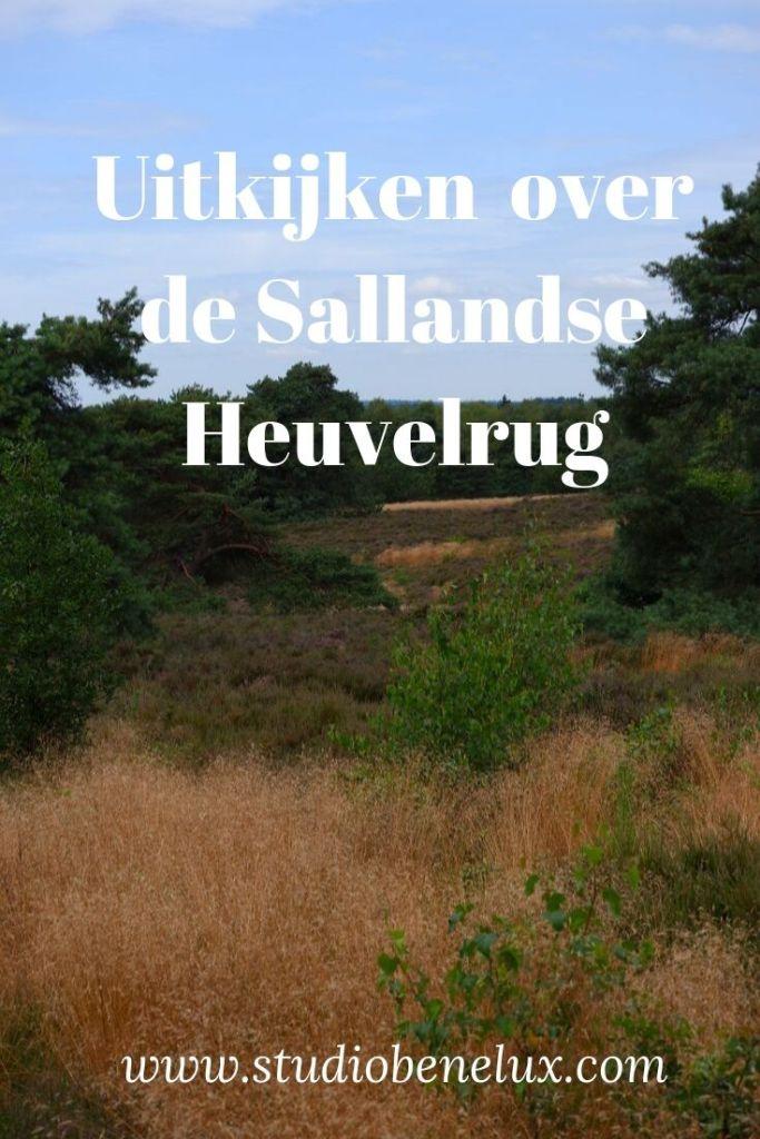 wandelen fietsen mountainbiken paardrijden Sallandse heuvelrug Nederland Benelux
