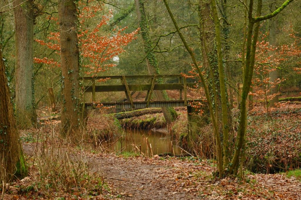 wandelen wandeling natuurwandeling Noord-Brabant Landgoed de Utrecht Esbeek Nederland Benelux