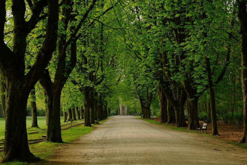 Turnhout Stadspark Kempen Vlaanderen groteroutepad wandelen wandeling België Kempen Benelux