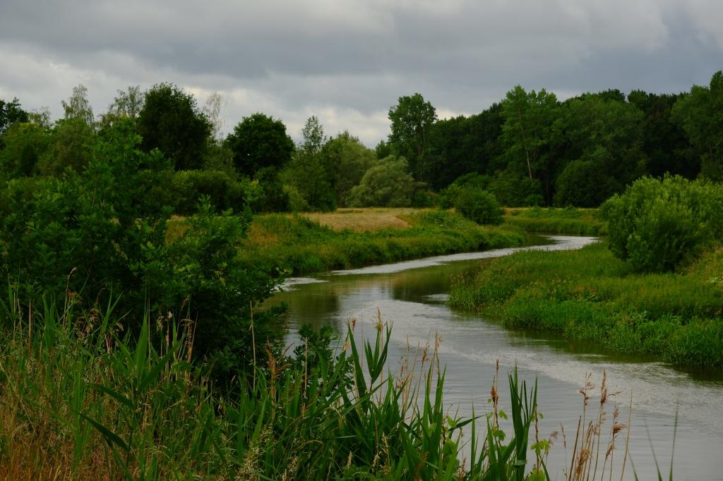 wandelen wandeling natuurwandeling Kesselse Heide  hike hiking backpacken Grote Nete Netevallei