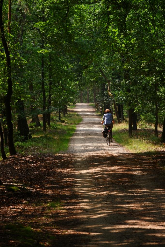 wandelen fietsen loenen veluwe Nederland loenense watervallen Benelux