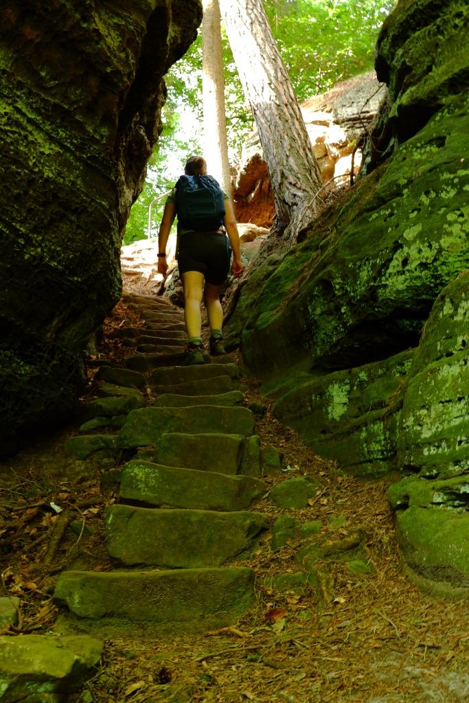wandeluitrusting wandelbroek wandelen wandeling wandeltocht dagwandeling basisuitrusting North Face Review