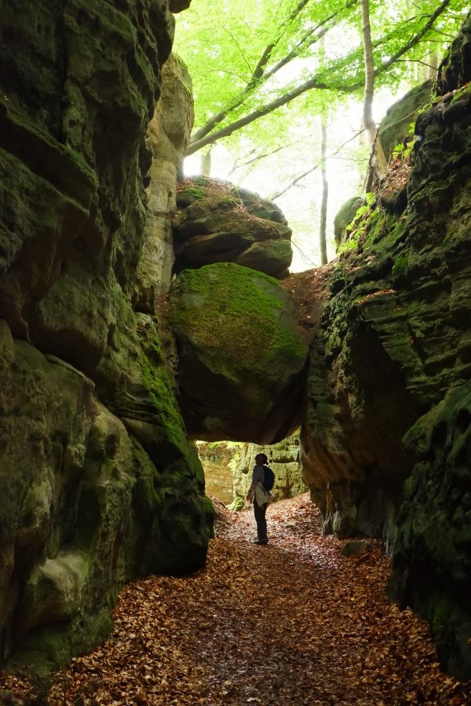 Mullerthal Consdorf reistips reisbestemming traveltips wandelen hiking hike wandelroutes rotsen C2 Belle Vue petit suisse