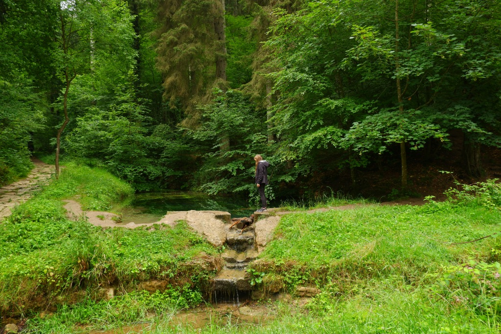 Consdorf wandelroute C2 Mullerthal Trail wandelen hike  hiking backpack travel reisinspiratie