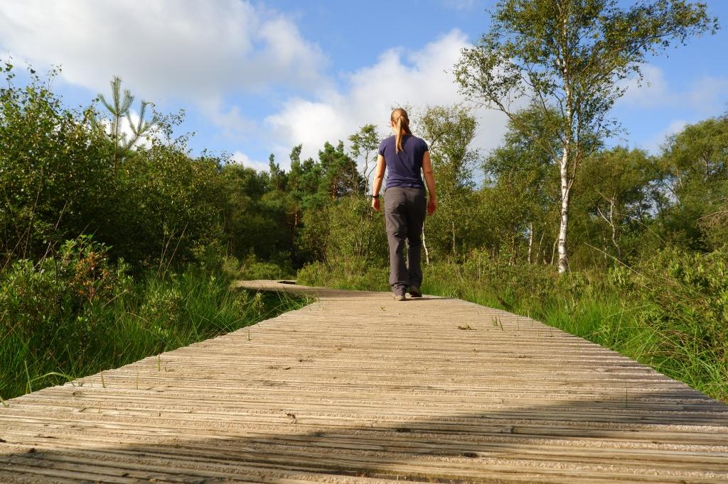 Cartierheide Hapertse Heide Noord-Brabant wandelroute wandelen natuurgebied Nederland Brabantse Kempen Benelux