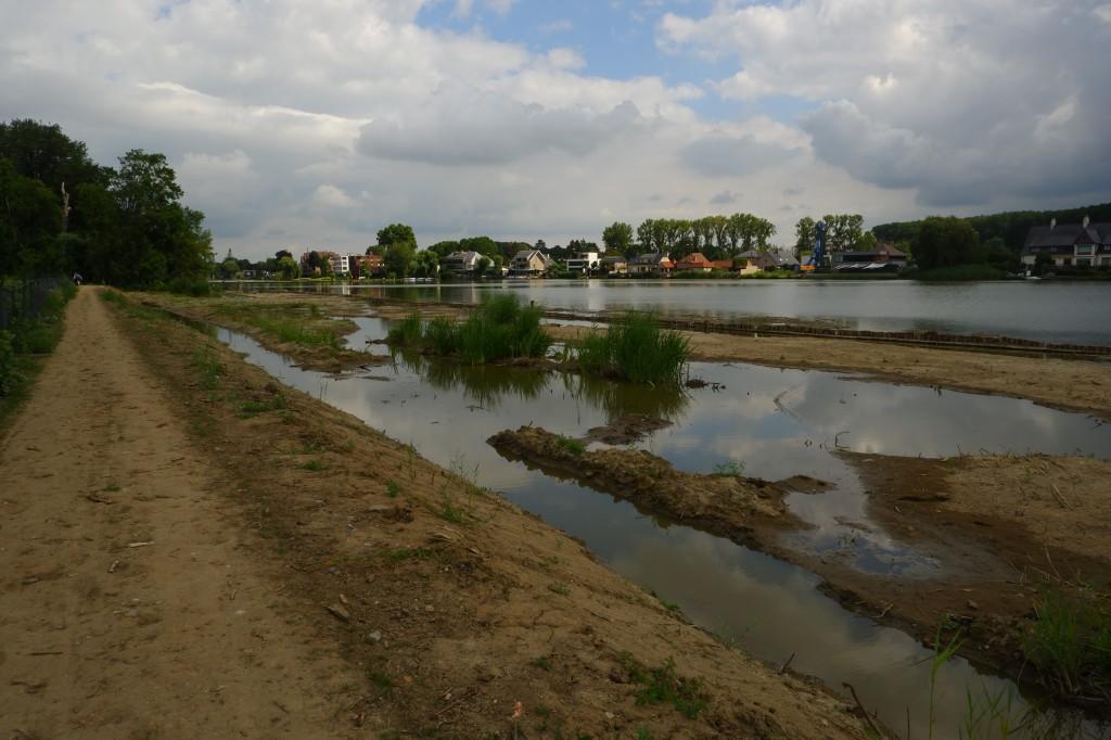 Donkmeer wandelen wandelroute recreatiedomein Oost-Vlaanderen Berlare België Nieuwdonk