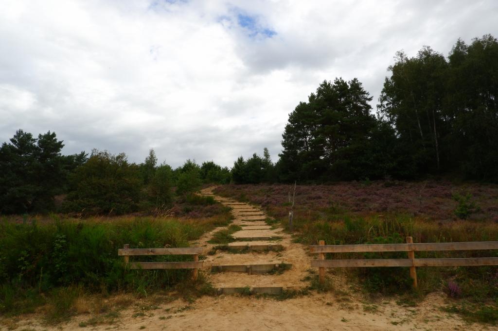 Mechelse heide wandelen wandeling wandelroute Limburg Belgisch België