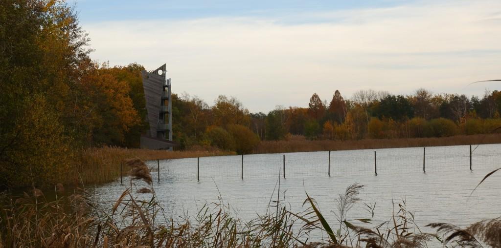 uitkijktoren zonhoven platwijers wijers vijvers wandelen wandeling limburg belgië hike