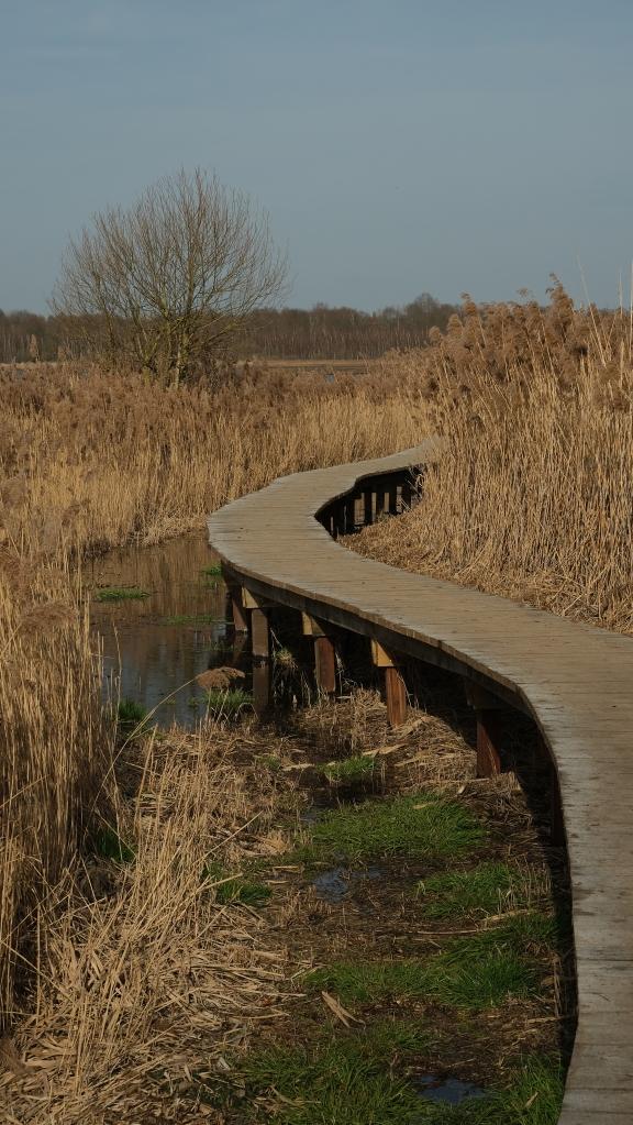 hotspot vlonderpad Vlaams-Brabant Vlaanderen meer wandelen Het Vinne provinciedomein België Belgique Belgium