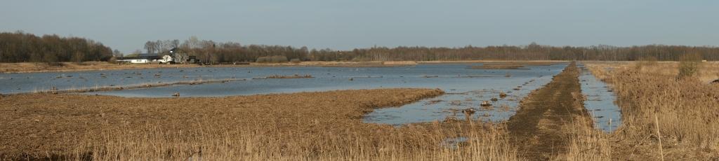 hotspot Vlaams-Brabant Vlaanderen meer wandelen Het Vinne provinciedomein België Belgique Belgium