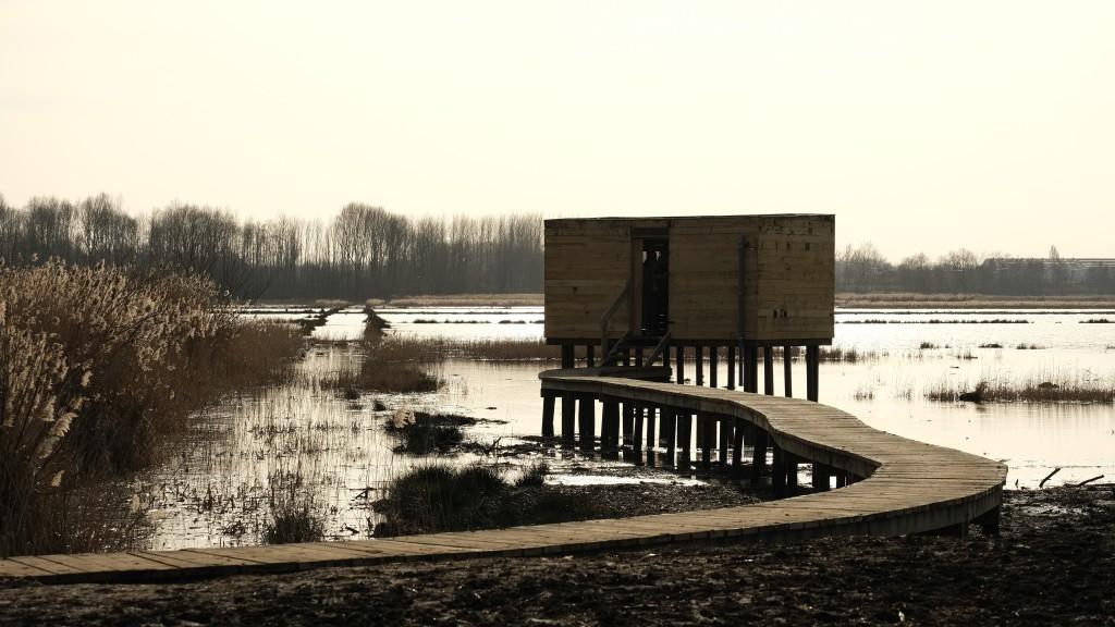 vogelkijkhut Vlaams-Brabant Vlaanderen meer wandelen Het Vinne provinciedomein België Belgique Belgium