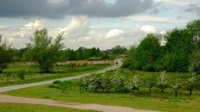 Kalkense Meersen wandelroute Oost-Vlaanderen België fietsroute Schelde land fietsen wandelen Benelux
