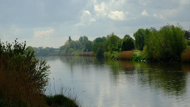 Kalkense Meersen wandelroute Oost-Vlaanderen België fietsroute Schelde land Benelux